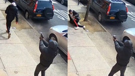 NYC gang member involved in 3 drive-by shootings after being released without bail in May: report