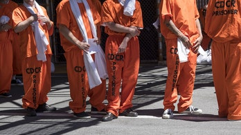 ACLU launches push to free 50,000 inmates from US prisons in response to 'systemic injustice'