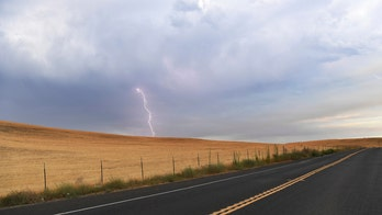 Lightning from rare 'violent' thunderstorms in California sparks dozens of wildfires across Bay Area