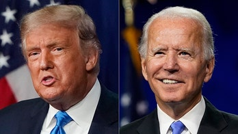 Democrats say Biden-Harris is the 'strongest gun safety ticket in history,' Republicans fear Second Amendment crackdown