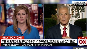 Peter Navarro clashes with CNN host over Fauci criticism, hydroxychloroquine