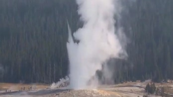 Yellowstone's Giantess Geyser erupts for first time in 6 years, roars 'back to life'