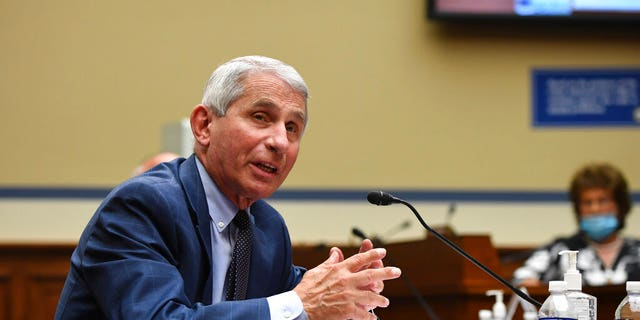 Dr. Anthony Fauci, director of the National Institute for Allergy and Infectious Diseases, speaks during a House Subcommittee on the Coronavirus crisis hearing, Friday, July 31, 2020, on Capitol Hill in Washington. (Kevin Dietsch/Pool via AP)