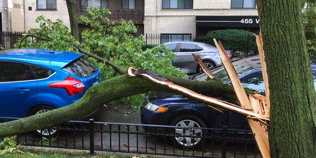 A downed tree limb blocks a roadway in Chicago's Lakeview neighborhood on Aug. 10. A rare storm packing 100 mph winds and with power similar to an inland hurricane swept across the Midwest on Monday, blowing over trees, flipping vehicles, causing widespread property damage, and leaving hundreds of thousands without power as it moved through Chicago and into Indiana and Michigan. (AP Photo/Tom Berman)