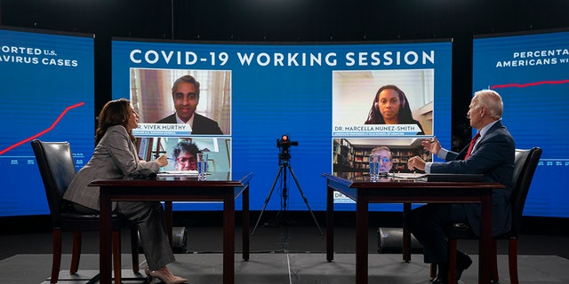 Democratic presidential candidate former Vice President Joe Biden and his running mate Sen. Kamala Harris, D-Calif., receive virtual briefing on COVID-19 from public health experts in Wilmington, Del., Thursday, Aug. 13, 2020. (AP Photo/Carolyn Kaster)