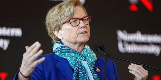 In this Jan. 27, 2020, file photo, Rep. Chellie Pingree, D-Maine, speaks a news conference in Portland, Maine. At least 4,800 chicks shipped to Maine farmers through the U.S. Postal Service have arrived dead in the recent weeks since rapid cuts hit the federal mail carrier's operations, Pingree said.(AP Photo/Robert F. Bukaty, File)