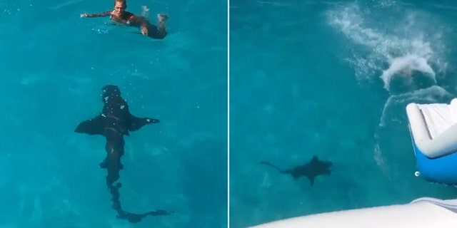 Woman slides into Bahamian waters as 8-foot shark 'bumped' into her | Fox  News
