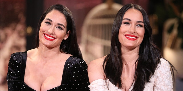 Nikki Bella and Brie Bella (Photo by: Jordin Althaus/E! Entertainment/NBCU Photo Bank/NBCUniversal via Getty Images)