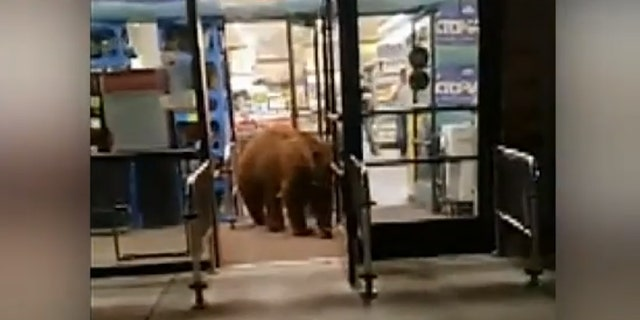 The video was shot Tuesday night at a Safeway grocery store in Lake Tahoe, California.