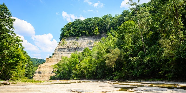The Zoar Valley Multiple Use Area south of Buffalo comprises about 3,000 acres of state-owned land with shale cliffs up to 400 feet tall rising above Cattaraugus Creek.