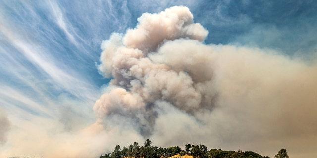 Uma pluma sobe sobre um vinhedo no não incorporado condado de Napa enquanto o incêndio de Hennessey queima na terça-feira, 18 de agosto de 2020.