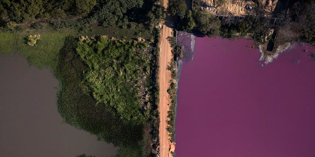 Residents said that the lagoon's color changed several months ago and local wildlife began to die in droves. (AP Photo/Jorge Saenz)