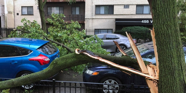 A downed tree limb blocks a roadway in Chicago's Lakeview neighborhood on Monday, Aug. 10, 2020.