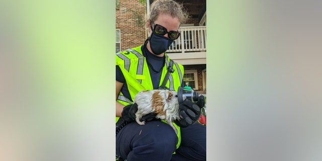 Facebook commenters thanked the first responders for their bravery in fighting the fire and saving the animals.