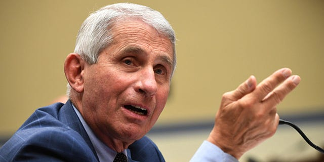 Fauci said New Jersey successfully followed preventative measures which resulted in its low percent positivity, less than 3%. Fauci is pictured here before a House Subcommittee on the Coronavirus Crisis hearing on July 31, 2020 in Washington, DC. Trump administration officials are set to defend the federal government's response to the coronavirus crisis at the hearing hosted by a House panel calling for a national plan to contain the virus. (Photo by Kevin Dietsch-Pool/Getty Images)