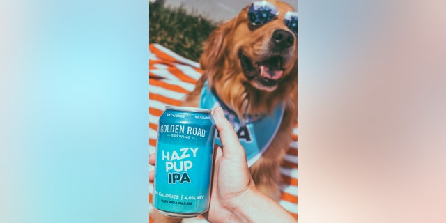 Deliveries can be booked on National Dog Day – Aug. 26 – and Aug. 27-29, according to the brewery. (Golden Road Brewing)