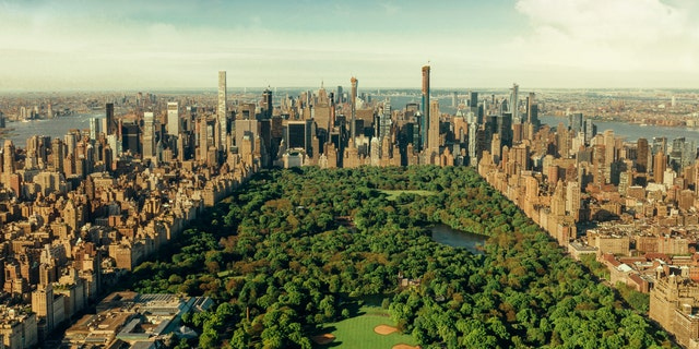 The healthcare workers would gather in Central Park and exchange stories over a bottle of wine.