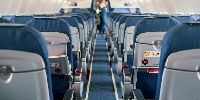 The team of researchers also noted how the plane's airflow system may have limited the number of potential COVID-19 cases. (iStock)<br data-cke-eol=