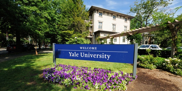 Welcome to Yale University sign located along Trumbull Street in New Haven, Connecticut. Photograph taken with purple flowers blooming under sign.