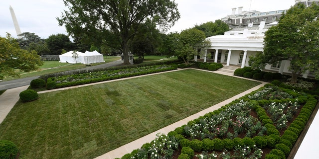 A view of the restored Rose Garden is seen at the White House in Washington, Saturday, Aug. 22, 2020.
