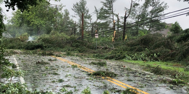 Trees lie smoldering among downed power lines after high winds and heavy rains tore through a residential neighborhood just south of Dover, Del., on Tuesday, Aug. 4, 2020.