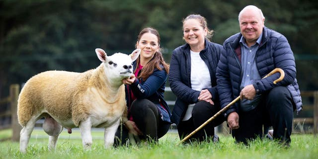 Double Diamond comes from a very respectable lineage in the sheep world. (Catherine Macgregor / SWNS)
