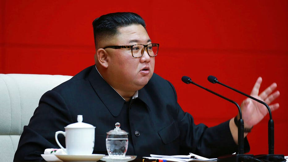 Kim Jong Un Orders Pet Dogs To Be Confiscated In North Korean Capital Pyongyang Fox News