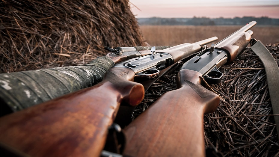 NY hunting licenses surge as COVID-19 pandemic has people seeking 'more ways to enjoy the outdoors': official