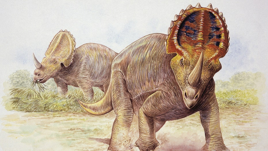 Fox News Flash top headlines for August 6