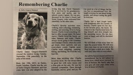 Dog's obituary melts hearts on Twitter: 'He was the best boy'