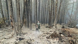 Oregon sheriff deputies make 21 arrests in wildfire evacuation zones