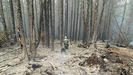 Oregon sheriff deputies make 21 arrests in wildfire evacuation zones