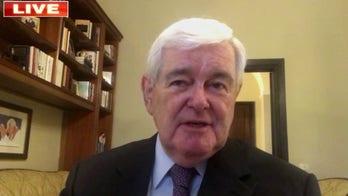 Gingrich: Dems' Supreme Court battle response makes 'two big gambles'