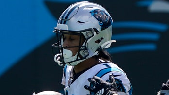 Panthers' Robby Anderson gets acquainted with Sir Purr: 'You call him that?'