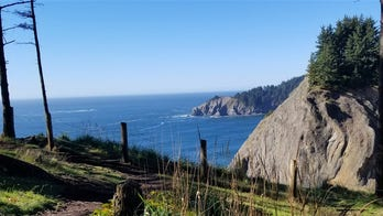 Oregon man plunges to his death posing for picture near cliff: report