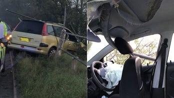 Driver survives as pole impales car during crash