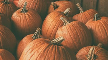 Utah pumpkin growers break record with 8 gourds over 1,000 pounds