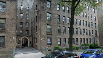 New York City mother killed by stray bullet that entered apartment window