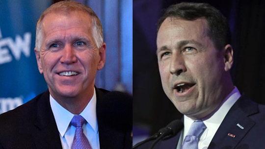 North Carolina Democrat opposing GOP's Thom Tillis sparks BBQ-vs.-grilling controversy with tweet