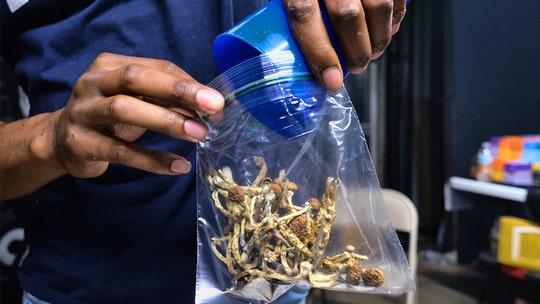 Michigan city decriminalizes magic mushrooms, other psychedelic plants