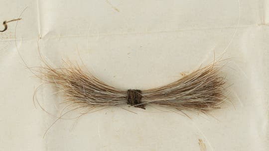 A piece of Lincoln's hair and telegram smeared with his blood sells for $81G at auction