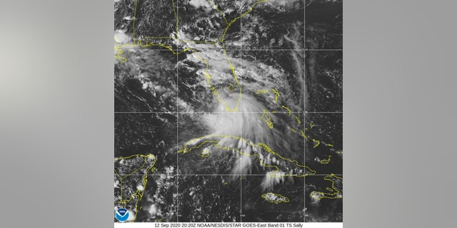 Tropical storm Sally strengthening, prompts hurricane and storm surge warnings 11