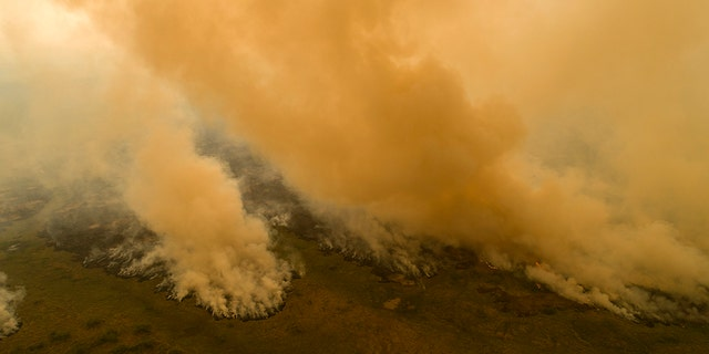 Fire consumes an area next to the Trans-Pantanalhighway in the Pantanal wetlands near Pocone, Mato Grosso state, Brazil, Friday, Sept. 11, 2020. Diminished visibility from fires in the Pantanal and the neighboring Amazon forced President Jair Bolsonaro's plane to abandon a Sept. 18 landing attempt in the state of Mato Grosso. (AP Photo/Andre Penner)