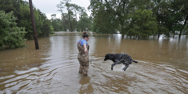 "Adelle Puma attempts to get her dog ""Ridge"" from swimming in the flood water over the submerged Mary Xing bridge at Marys Creek that leads into Clear Creek as Tropical Storm Beta rainfall trained over the area Tuesday, Sept. 22, 2020, in Friendswood."