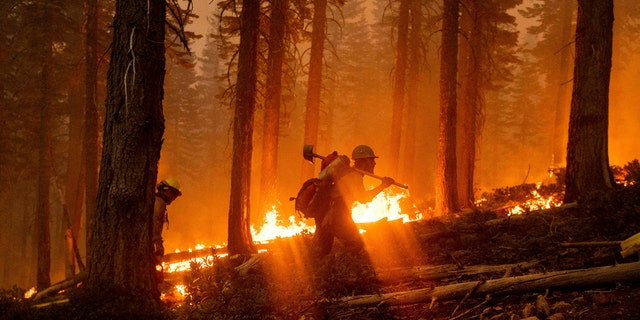 Firefighter Cody Carter battles the North Complex Fire in Plumas National Forest, Calif., on Monday, Sept. 14, 2020.
