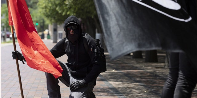 Anti-fascist protesters hold flags on the Christian Science Plaza, Saturday, July 11, 2020, in Boston. (AP Photo/Michael Dwyer)