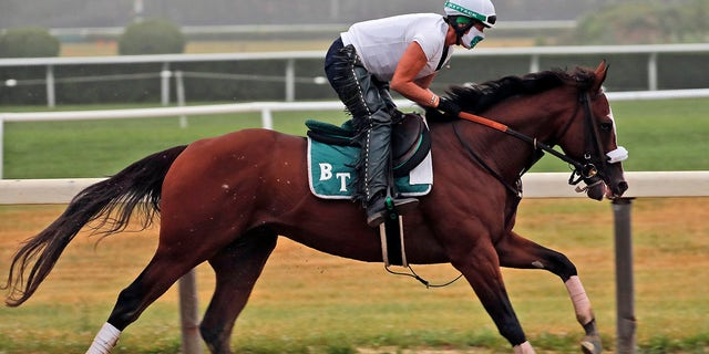 FILE - June 19, 2020: Robin Smullen rides Tiz the Law during a workout at Belmont Park in Elmont, N.Y., Belmont Stakes winner Tiz the Law is the 3-5 morning-line favorite for the 146th Kentucky Derby and will attempt to become the first winner from the No. 17 post position drawn for Saturday's rescheduled marquee race for 3-year-olds. (AP Photo/Seth Wenig)