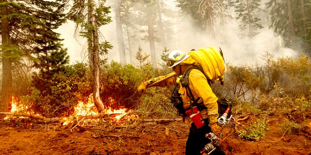 Firefighters trying to contain the massive wildfires in Oregon, California and Washington state are constantly on the verge of exhaustion as they try to save suburban houses, including some in their own neighborhoods.