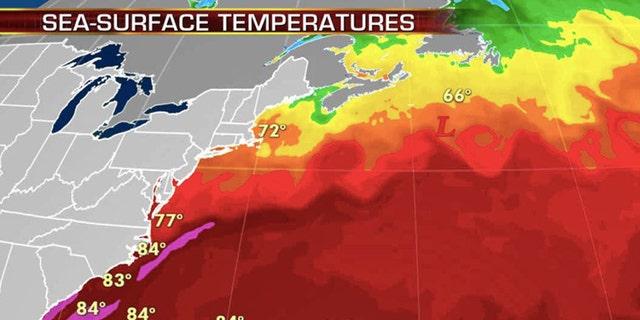 September sea surface temperatures across the Atlantic Ocean.