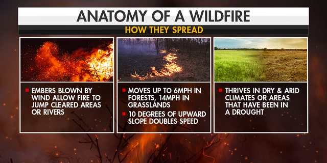 How wildfires spread. (Fox News)